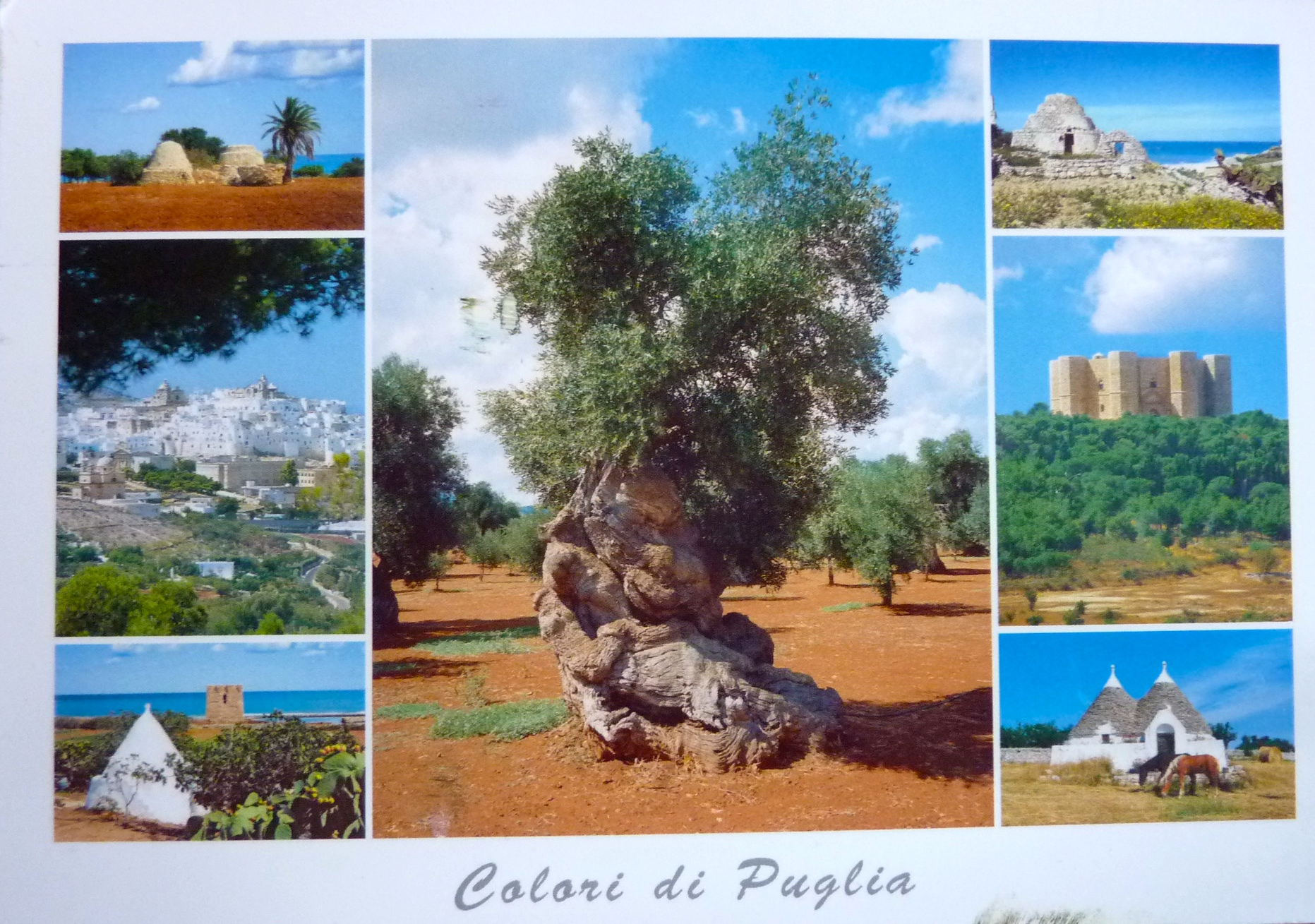 carte postale senegal