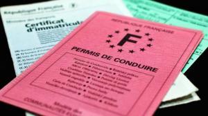 don-dorganes-faut-il-le-mentionner-sur-le-permis-de-conduire_1